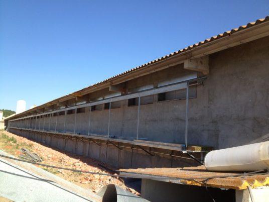 instalación humidificación gallinero
