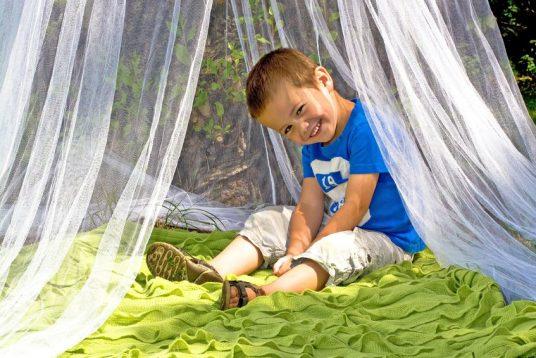 Niño pequeño dentro de una mosquitera